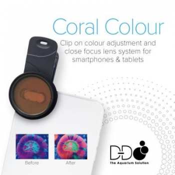 D-D Coral Colour Lense