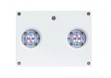 AI Hydra 32 HD Led Set