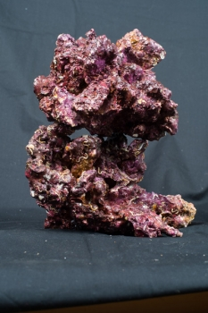 Real Reef Rocks small/medium, 25 kg/Box