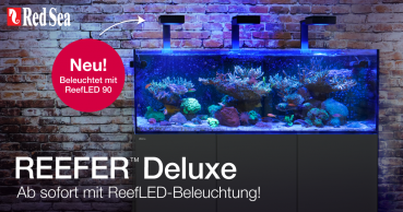 Red Sea REEFER™ Reefer XL 525 Deluxe Komplettsystem - Schwarz