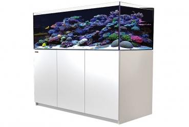 Red Sea Reefer 525 XL, ab